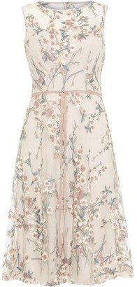 Phase Eight Maddy Fit And Flare Embroidered Dress