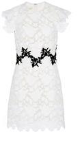 Giambattista Valli Macram All Over Rose Mini Dress