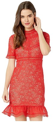Bardot Theodora Dress Lace (Fire Red) Women's Clothing