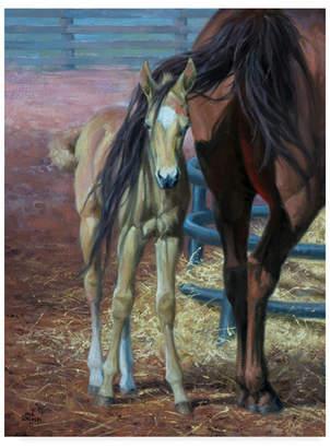 "Jack Sorenson Horses Bad Hair Day Canvas Art - 15"" x 20"""
