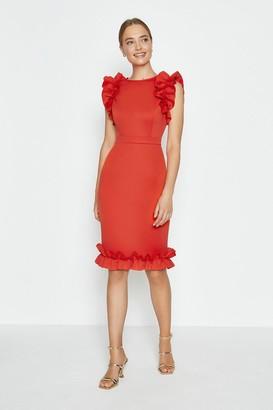 Coast Ruffle Sleeve And Hem Dress