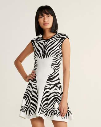 RVN Zebra Stripe Flare Dress