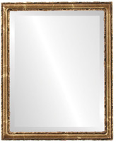 """The Oval And Round Mirror Store Virginia Framed Rectangle Mirror in Champagne Gold, 21""""x25"""""""