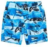 Molo Nario Swim Trunks