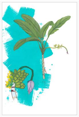 Jonathan Bass Studio Palm 3, Decorative Framed Hand Embellished Canvas