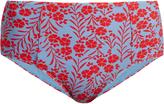 Diane von Furstenberg Floral-print high-waist bikini briefs