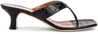 Paris Texas Moc Croco 45 Thong Sandal in Black | FWRD
