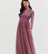 Asos DESIGN Petite long sleeve maxi dress in embroidered mesh