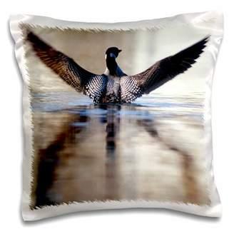 Hawkins 3drose 3dRose Minnesota, Common Loon bird, Leech Lake - US24 PHA0005 - Peter Pillow Case, 16 by 16-inch