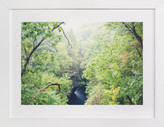 Minted Gorge-ous Art Print
