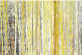 Parvez Taj Aspen Forest Canvas Wall Art