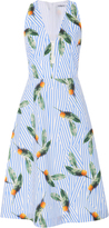 Cacharel Printed Cotton Dress