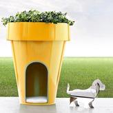 Castelli De Dog-E Dog's House