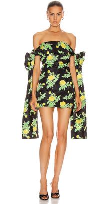 BERNADETTE Timothy Taffeta Dress in Yellow Painted Rose On Black | FWRD