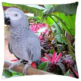 "iRocket - Grey parrot - Throw Pillow Cover (16"" x 16"", 40cm x 40cm)"