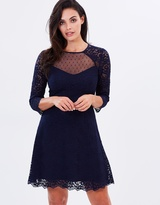 Oasis Lace Mesh Insert Skater Dress