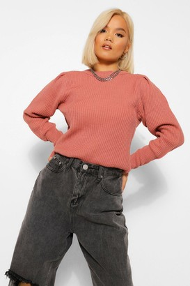 boohoo Petite Crew Neck Knitted Jumper