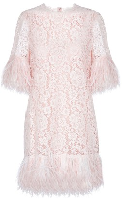 Dolce & Gabbana Feather-trimmed lace minidress