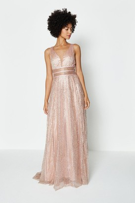 Coast Sparkle Mesh Bodice Maxi Dress