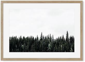 H&M Scandinavian Forest Print