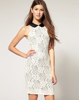 Textured Lace Dress With Contrast Collar