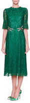 Dolce & Gabbana Dragonfly-Embellished Lace Midi Dress, Light Musk Green