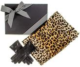 Black Leopard Print Scarf and Cashmere Lined Leather Gloves Gift Set