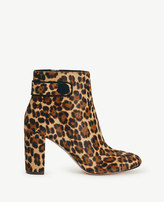 Ann Taylor Imogen Haircalf Booties