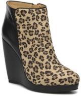 Buffalo David Bitton Women's Bachi Pointed Toe Ankle Boots In Multicolor - Size Uk 7.5 / Eu