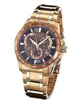 Citizen Eco-Drive Rose and Brown Watch