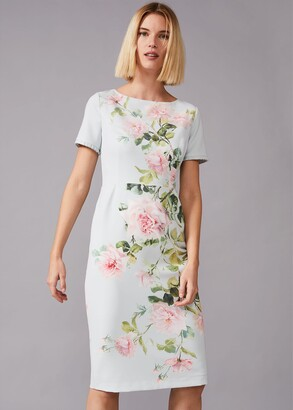 Phase Eight Shanea Fitted Floral Dress