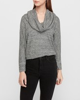 Express Soft Waffle Knit Cowl Neck Tunic Top