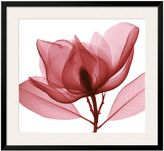 Art.com Red Magnolia I Framed Wall Art
