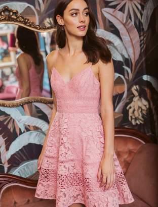Ever New Selma Deep V Lace Prom Dress