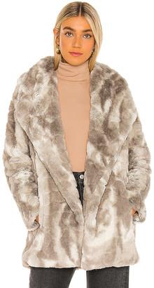 BB Dakota Swirls Gone Wild Jacket