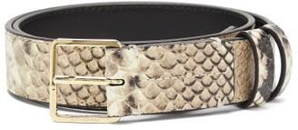 Altuzarra Snake-effect Leather Belt - Grey Multi