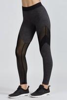 Koral Frame Legging
