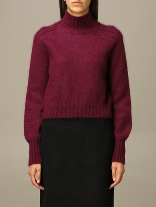 Alberta Ferretti Sweater Mohair And Virgin Wool Turtleneck