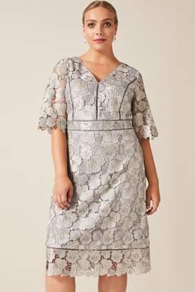 Studio 8 Womens Grey Ellis Lace Dress - Grey