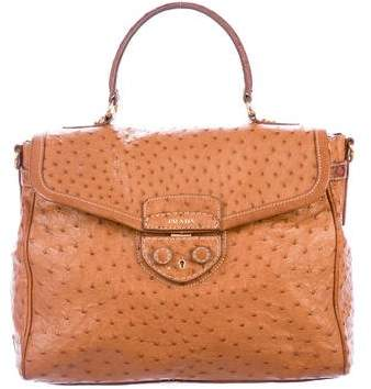 716e55dcd1b24a Prada Orange Ostrich Leather Tote 150846 At Best Tlc. Prada Brown Handbags  Style
