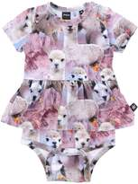 Molo Dresses - Item 34734388