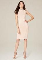Bebe Curve Lace Panel Midi Dress