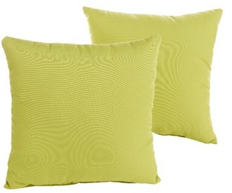 """Bay Isle Home Parrish Green Indoor/Outdoor Throw Pillow Size: 18"""" H x 18"""" W x 6"""" D"""