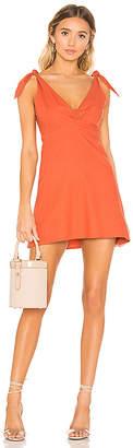 Privacy Please Napa Mini Dress