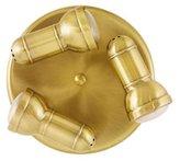 Regency 3 Light Plate Spot Light Antique Brass Finish