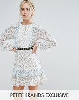 True Decadence Petite Frill Hem Skater Dress With Metal Belt Detail In Ditsy Floral Print