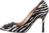 Manolo Blahnik Hangisi Zebra-Print Calf Hair Pump