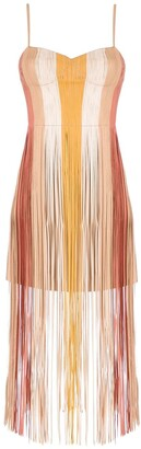 Nk Fringe Dress