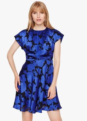Phase Eight Elsa Devore Dress