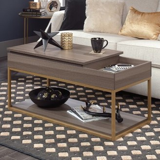 Broadridge Coffee Table with Tray Top and Storage Willa Arlo Interiors